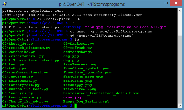 RPi transferred file from USB